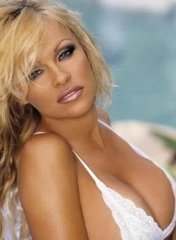 An image of Pamela Anderson's famous cleavage