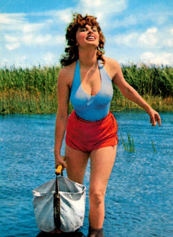 An image of Sophia Loren and her iconic boobs